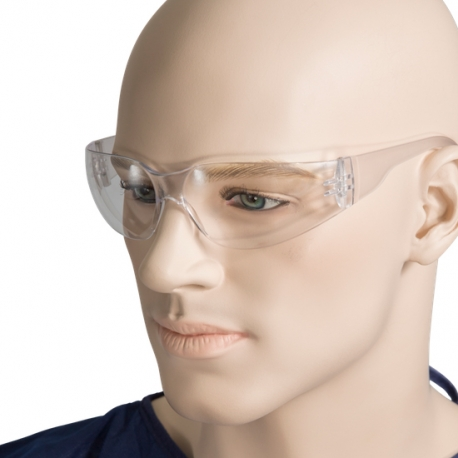 Safety Glasses/Goggles (1 Pair)